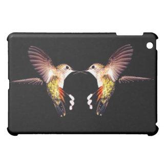 El animal de los pájaros de los colibríes empluma