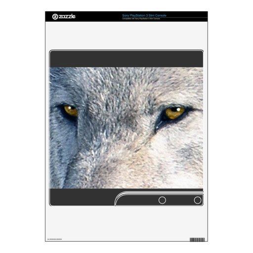 El animal del lobo gris observa 2 la piel de Plays PS3 Slim Calcomanías