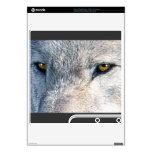 El animal del lobo gris observa 2 la piel de Plays PS3 Slim Calcomanía
