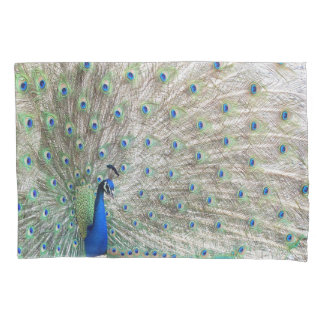 El animal del pájaro del pavo real empluma la funda de cojín