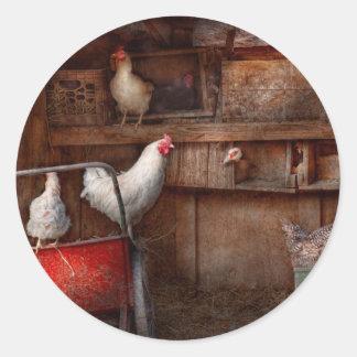 El animal - pollo - el pato es espía pegatinas redondas