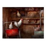 El animal - pollo - el pato es espía tarjetas postales