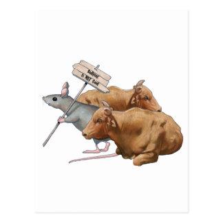 El Anti-Tiranizar: Toros, ratón: Tiranizar no Postales