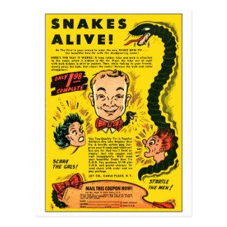 El anuncio cómico del kitsch retro del vintage postal