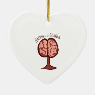 El aprendizaje, está creciendo adorno de cerámica en forma de corazón