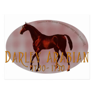 El árabe de Darley Tarjeta Postal