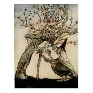 El árbol 1922 de la bruja y de la señora mayor tarjetas postales