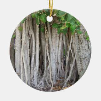 El árbol antiguo viejo del ficus arraiga la imagen adorno navideño redondo de cerámica