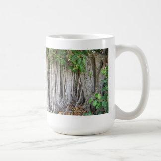 El árbol antiguo viejo del ficus arraiga la imagen tazas de café