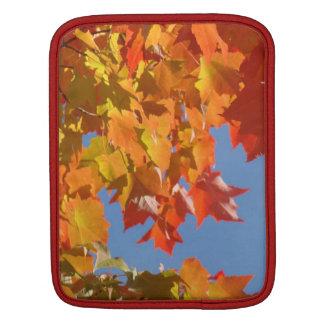El árbol brillante del otoño sale de personalizado manga de iPad