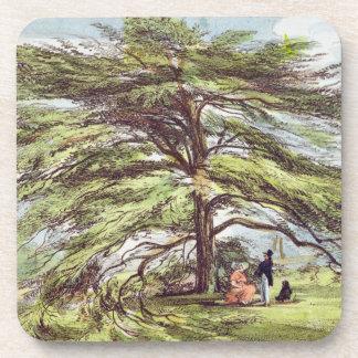 El árbol de cedro de Líbano en el arboreto, Kew Ga Posavaso