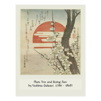 El árbol de ciruelo y el sol naciente tarjeta postal