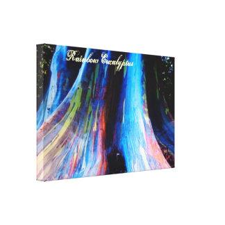El árbol de eucalipto del arco iris de Hawaii Lienzo Envuelto Para Galerias