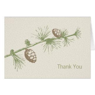 El árbol de hoja perenne le agradece las tarjetas