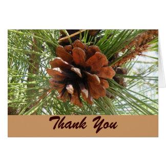 El árbol de hoja perenne y Pinecone le agradecen c Tarjeta