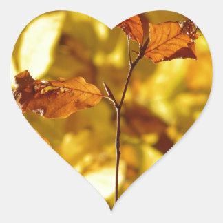 El árbol de la caída del otoño sale de la calcomanía corazón