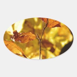 El árbol de la caída del otoño sale de la pegatina ovalada