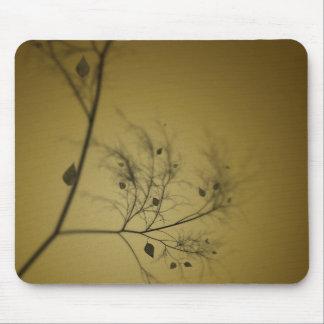 El árbol de la caída tapete de ratones