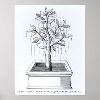 El árbol de la vida, o el árbol que llora póster