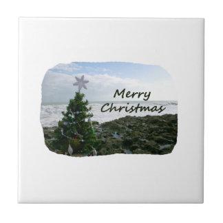 El árbol de navidad contra la playa oscila Felices Teja