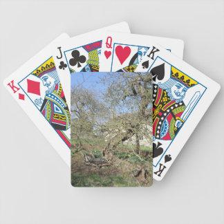 El árbol de Newton en el señorío de Woolsthorpe Cartas De Juego