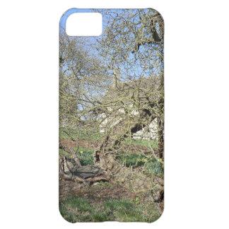 El árbol de Newton en el señorío de Woolsthorpe Funda Para iPhone 5C