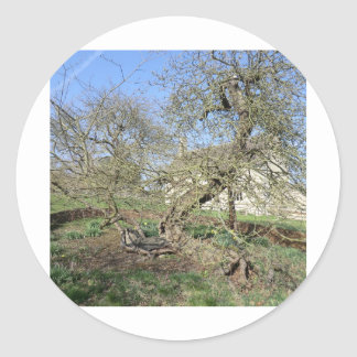El árbol de Newton en el señorío de Woolsthorpe Pegatina Redonda