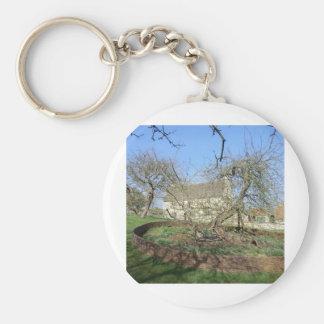 El árbol de Newton en el señorío de Woolthorpe Llavero Redondo Tipo Pin