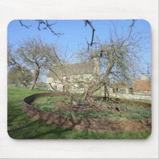 El árbol de Newton en el señorío de Woolthorpe Tapete De Ratones