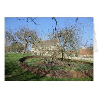 El árbol de Newton en el señorío de Woolthorpe Tarjeta De Felicitación