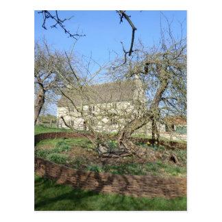 El árbol de Newton en el señorío de Woolthorpe Tarjeta Postal