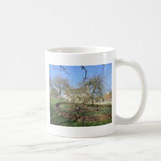 El árbol de Newton en el señorío de Woolthorpe Taza Clásica