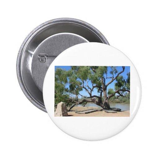 El árbol del empuje pin