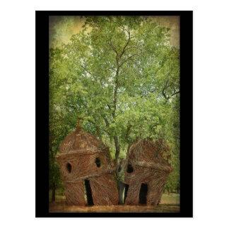.:: El árbol del puesto de observación::. Tarjetas Postales
