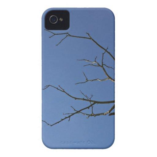 El árbol del relámpago iPhone 4 cobertura
