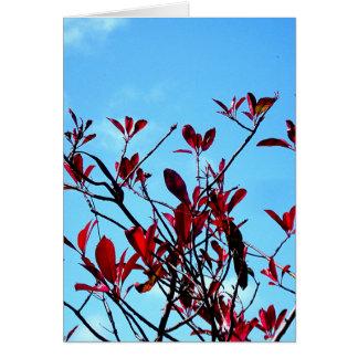 """El árbol del """"vuelo"""" tarjeta de felicitación"""