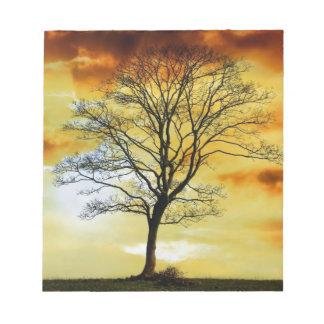 El árbol imponente, foto del paisaje de la natural libreta para notas