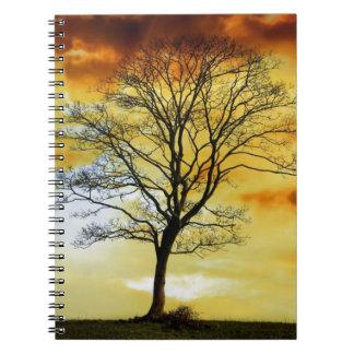 El árbol imponente, foto del paisaje de la natural notebook