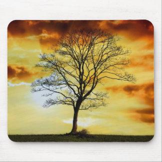 El árbol imponente, foto del paisaje de la natural tapetes de raton