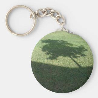 El árbol llavero