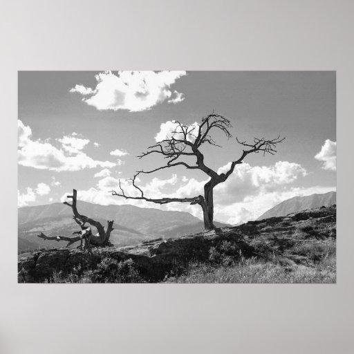 El árbol marchitado (Unbordered) Poster