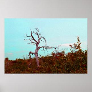 el árbol muerto contra verde sale del trullo del c posters