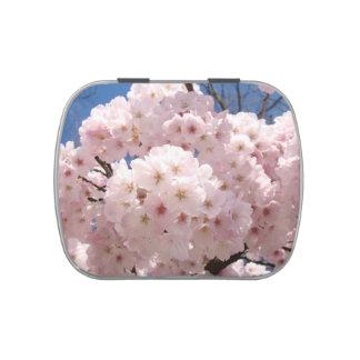 El árbol rosado de la primavera florece los regalo frascos de dulces