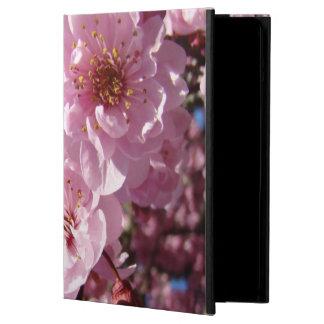 El árbol rosado hermoso florece las cajas del aire