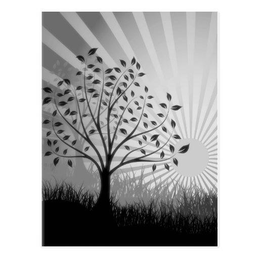 El árbol sale de la silueta y del resplandor solar tarjetas postales