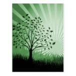El árbol sale de la silueta y del resplandor solar postales