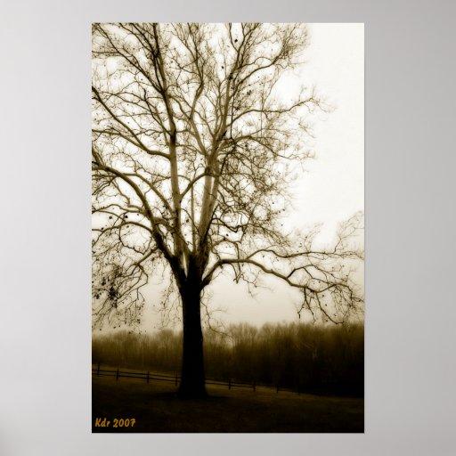 El árbol se coloca solamente póster