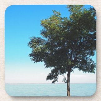 El árbol solo con verde se va en la costa posavasos de bebidas