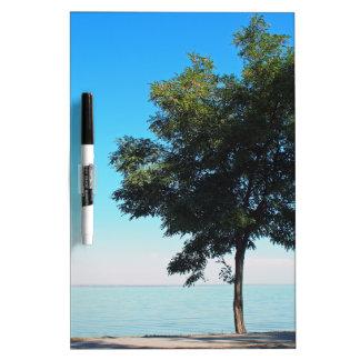 El árbol solo con verde se va en la costa tableros blancos