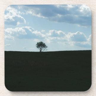 El árbol solo posavasos